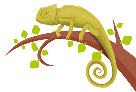 like a chameleon adapts to surroundings, our personality traits can be adaptive